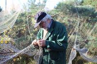 Стационар кольцевания птиц на Куршской косе продолжит работу в ноябре.