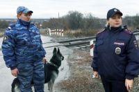 Служебный пёс сразу взял след и привёл сотрудников инспекции ПДН к железной дороге.