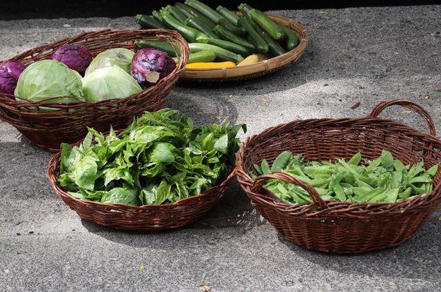 Травка, салаты и капуста. Можно ли есть зеленые продукты сердечникам?
