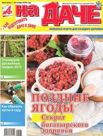 Поздние ягоды: секрет богатырского здоровья