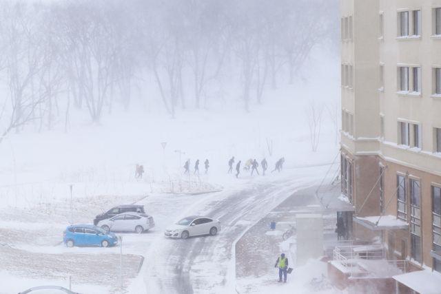 Кто научит, как живым и здоровым дойти до дому в тяжёлые зимние приморские бури?