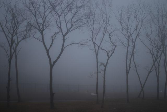 Внимание, водители: на оренбургских дорогах будет туман