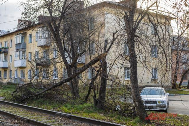 Ураган в Новосибирске.