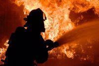 В Киевской области на пожаре погибли три человека, из них двое детей.