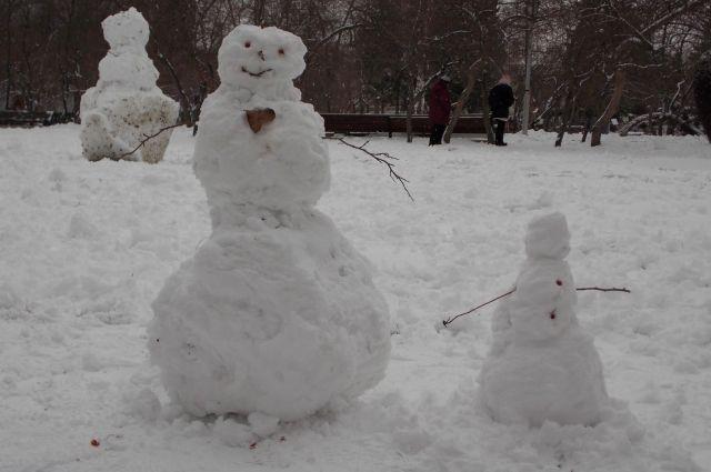 Новосибирцам обещают сильный снегопад.