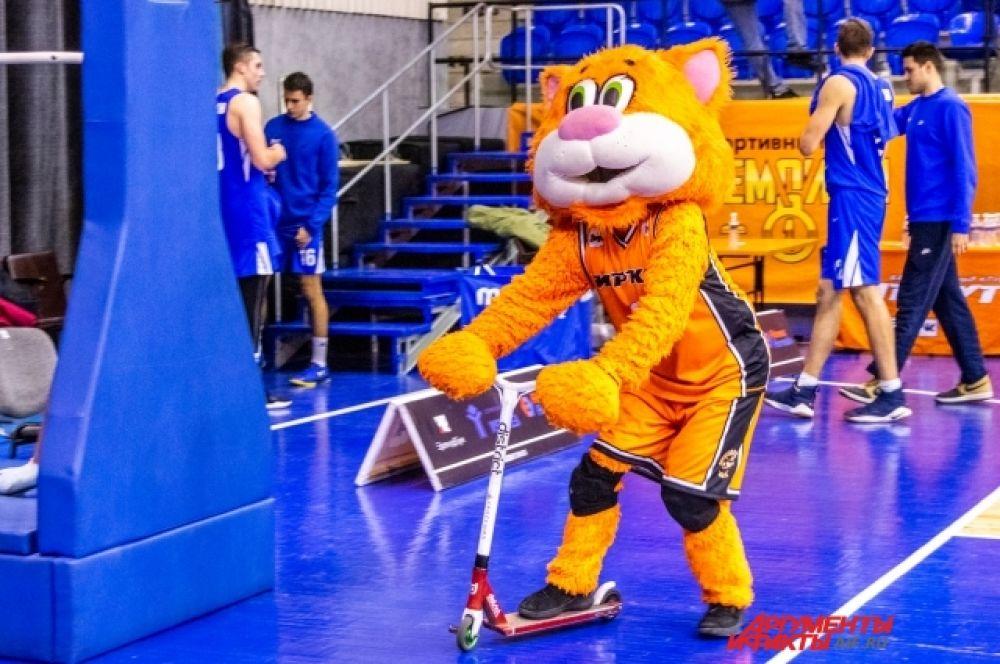 Талисман оранжево-чёрных – кот Феликс, любимец команды и публики