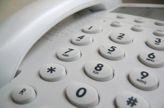 Звонки и сообщения будут приниматься два дня 8 и 9 ноября.
