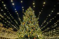 «Праздник к нам приходит»: когда засияет главная елка Украины