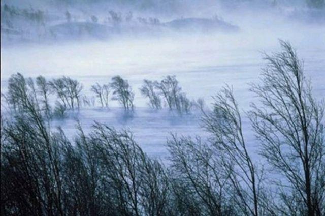 В Хабаровске 9 числа по прогнозу днем ожидается дождь.