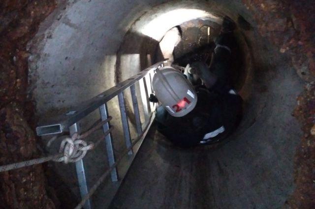 Спустившись по лестнице в колодец, они достали собаку и отпустили её на волю.