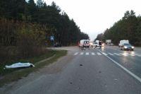 Под Львовом водитель мотоцикла врезался в велосипедиста: оба погибли