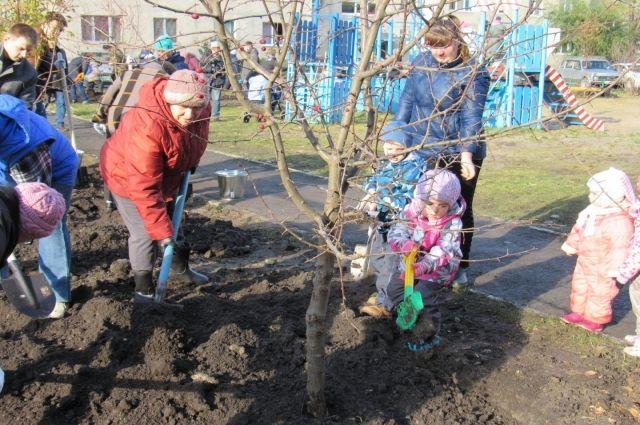 Тюменцы посадили в шести дворах областного центра 114 деревьев