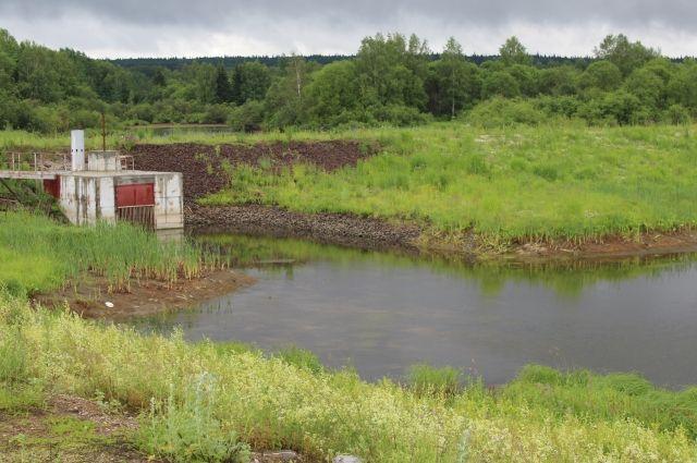 Летом Яя сильно мелеет, и концентрация загрязняющих веществ в ней становится опасной для жизни людей.