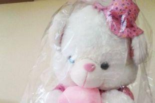 Украденного медведя иркутянин подарил возлюбленной в знак примирения.