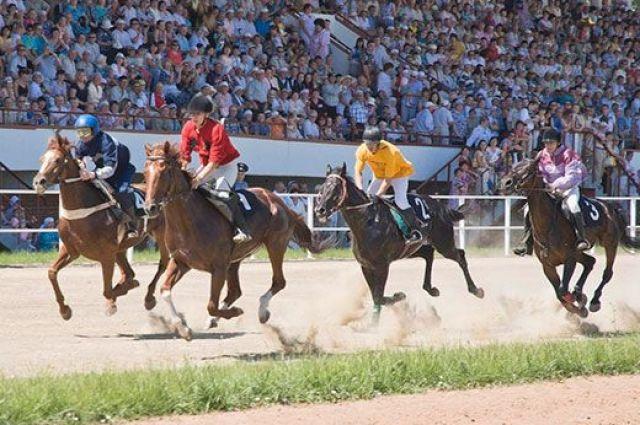 В былые времена на ипподроме, помимо всероссийских соревнований по конному спорту и скачек, автогонок, проходили выставки и большие праздники.