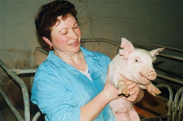 Свинины мы уже производим столько, что экспортируем в СНГ и Китай.
