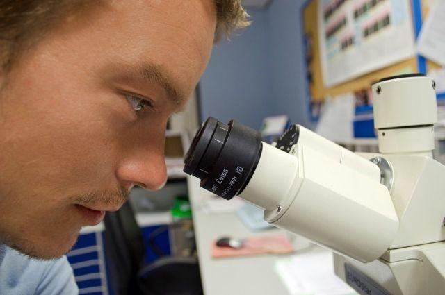 Многим молодым учёным, преподающим в вузах, на эксперименты просто не хватает времени.