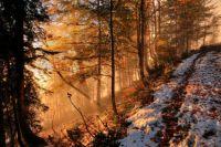 16 ноября: праздник в Украине, народный календарь, традиции, приметы