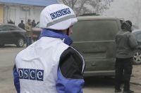 ОБСЕ обнаружила близ Мариуполя минные ловушки на деревьях
