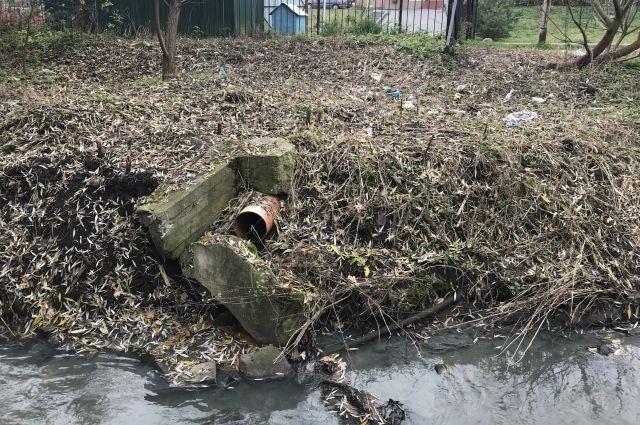 В парке Калининграда обнаружили несанкционированный спуск сточных вод.
