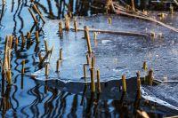 В МЧС напоминают, что лёд ещё не окреп и выходить сейчас на водоёмы опасно.