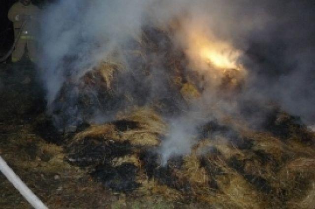 Сено горело на площади около 600 кв.м.