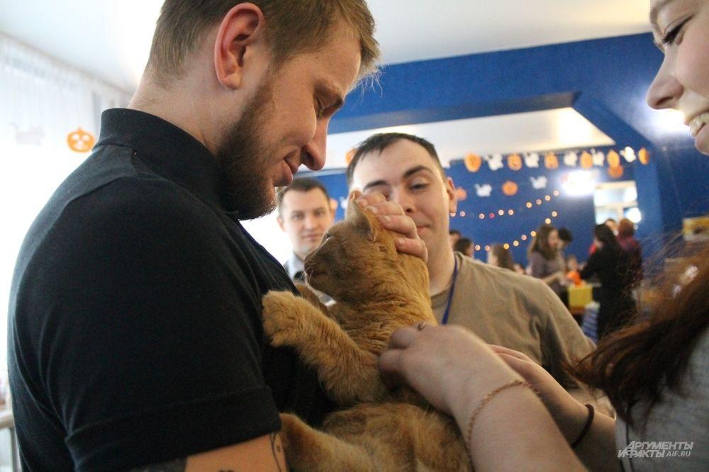 Кот Атос дождался своего хозяина.