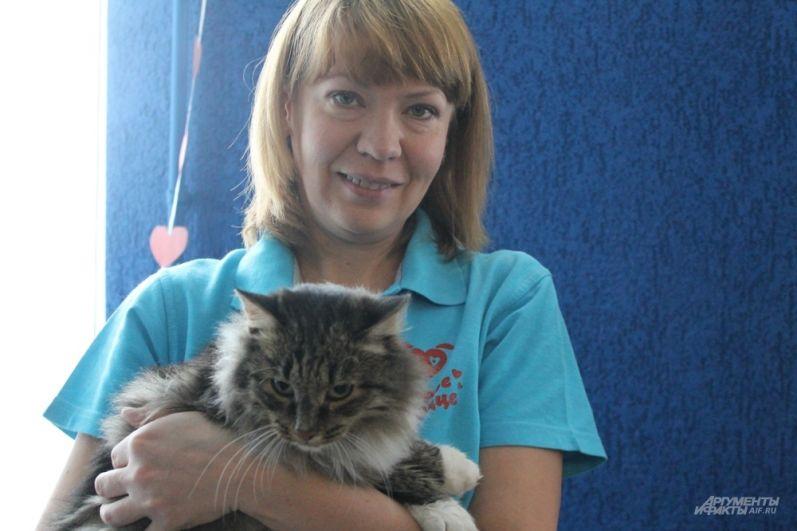 Волонтеры рассказывают о судьбах котиков.