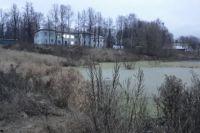 Пруд по улице Зернова