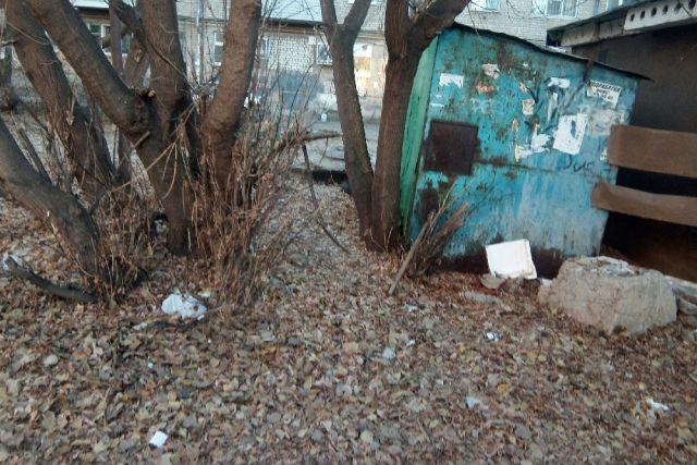 Активисты рязанского ОНФ обнаружили стихийную свалку на улице Дзержинского.