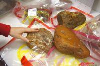 В карьере под Калининградом обнаружили янтарный самородок весом более 2 кг.