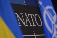Украина и Грузия должны стать членами альянса, - президент ПА НATO