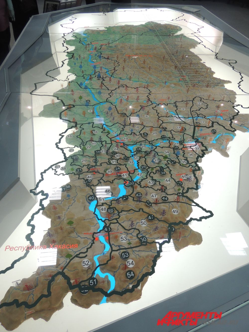 Карта лесов Красноярского края.