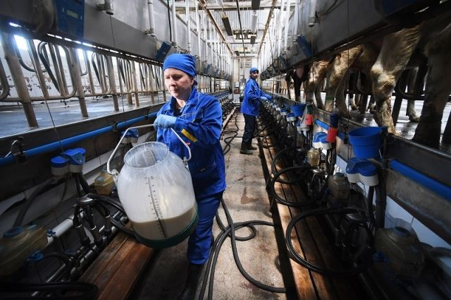 Уже скоро в Подмосковье появятся новые животноводческие комплексы.