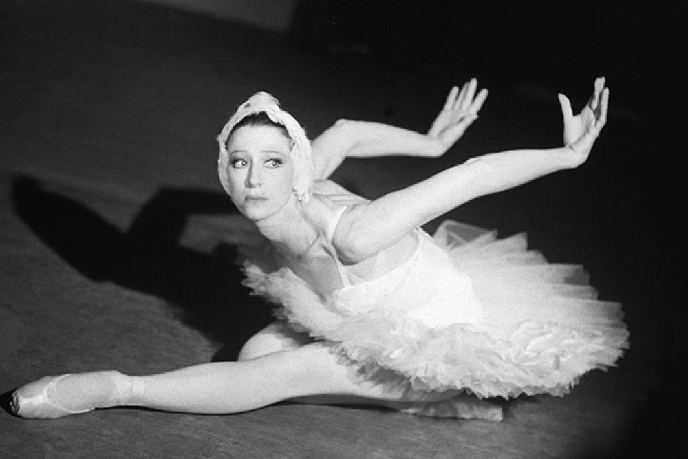 """Чтобы создать партию """"Умирающего лебедя"""" Майя Плисецкая приходила в зоопарк, где подолгу наблюдала за лебедями и ждала, когда они раскроют крылья. Однажды черный лебедь подарил ей это мгновение. Так и родился знаменитый """"Лебедь""""."""