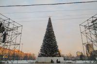 Елка на площади Ленина будет высотой 22 метра.
