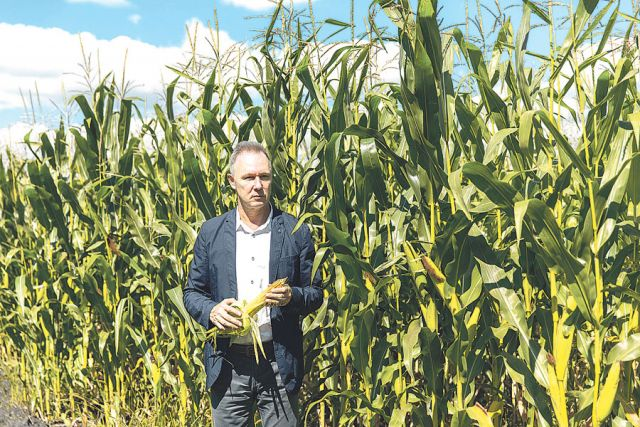 Ярослав Дмитриев: «Ежегодно на полях мы испытываем новые сорта кукурузы, и самые перспективные идут в  севооборот».
