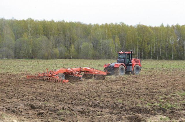Заброшенные земли на Смоленщине возвращают в сельскохозяйственный оборот.