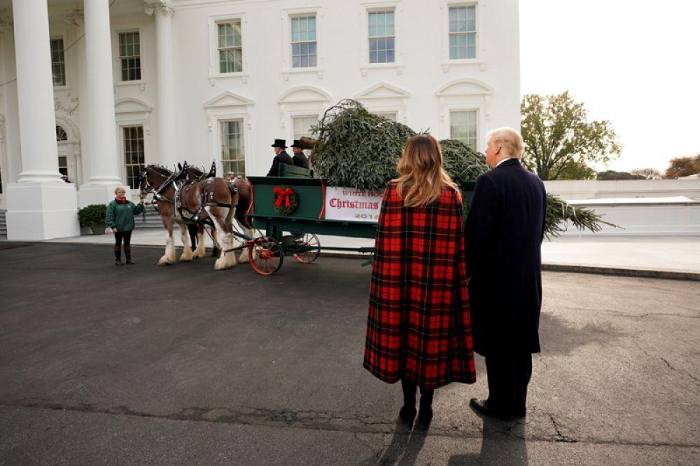 Прибытие рождественской елки в Белый дом в Вашингтоне.