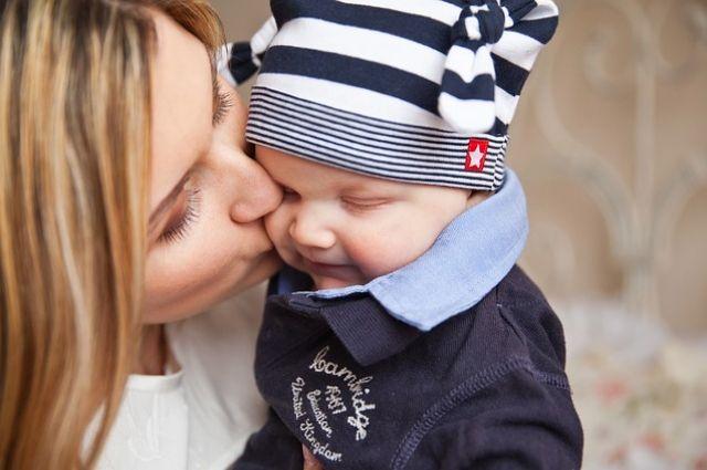 25 ноября: День матери, именинники, народный календарь, традиции