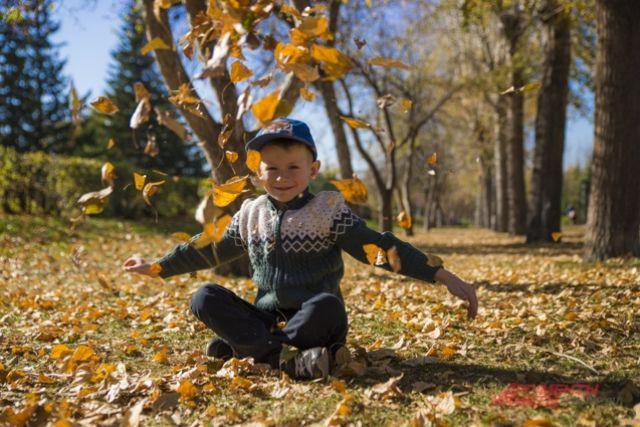 Тюменцы выбрали лучшие фотографии «Краски осени: Подари осенний букет!»