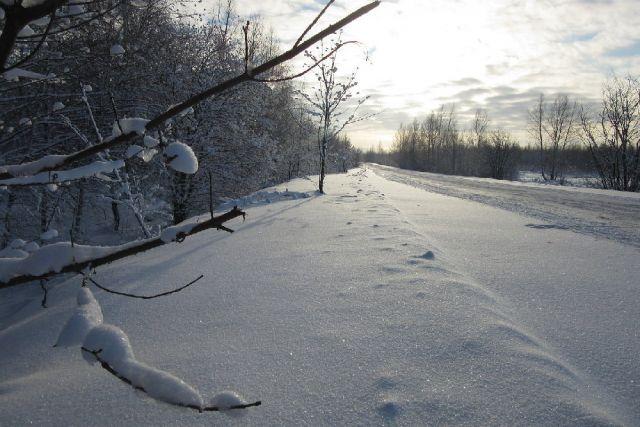 Житель Прикамья обнаружен мёртвым в зимнем лесу.