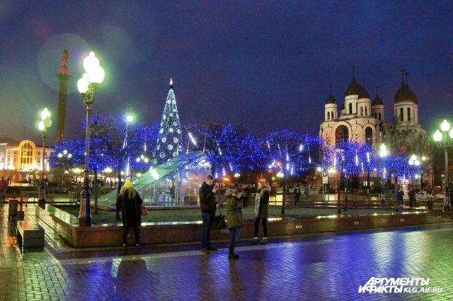 На площади Калининграда во второй раз начали устанавливать городскую елку.