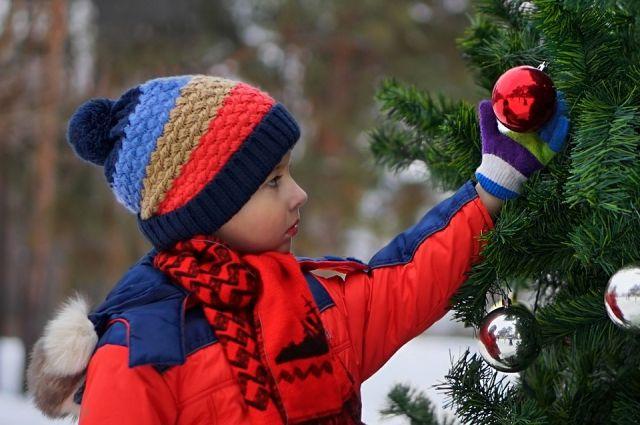 Пришло время ожидания новогодних чудес. В них верят все – и дети, и даже самые скучные взрослые.