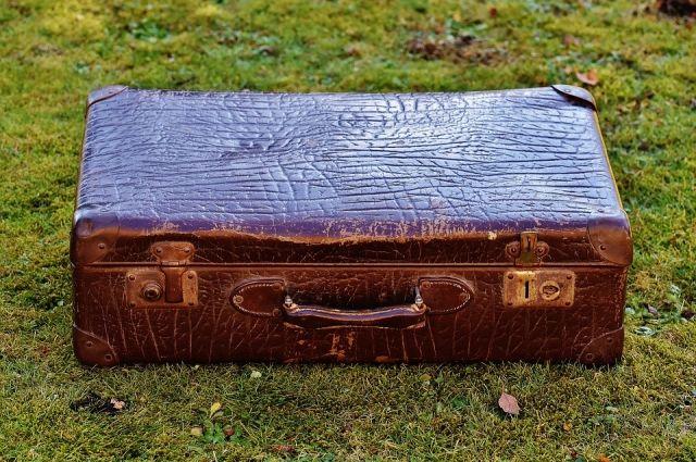 Труп с чемоданом нашли в лесополосе.