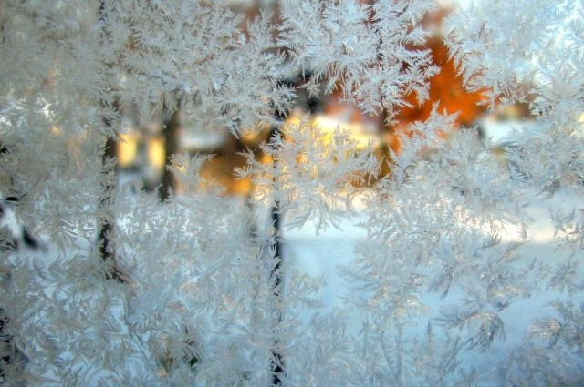 В Украине прогнозируют до 17 градусов мороза