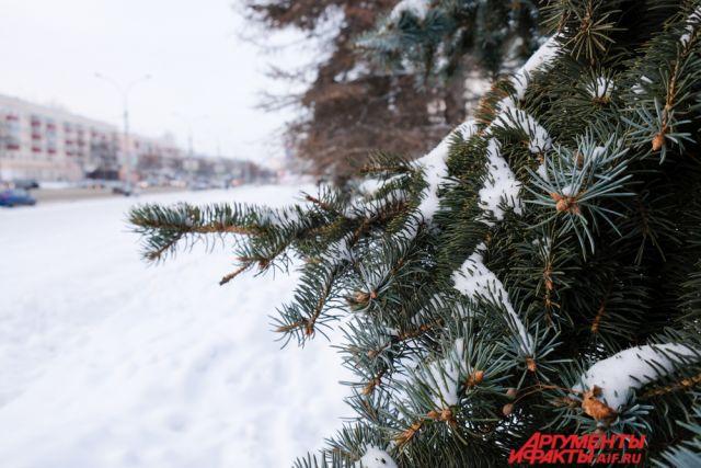 Скорее всего, месяц будет снежным и тёплым.