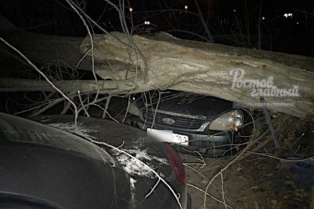 На 1-й Конной Армии, 6А дерево упало на забор и припаркованный автомобиль.