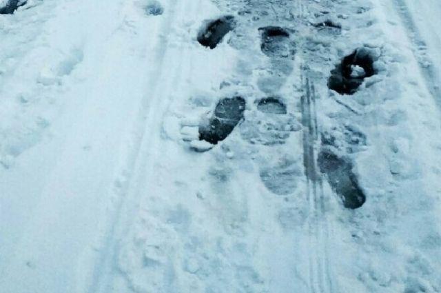 Следы на льду привели к Сылвенскому автомобильному мосту.