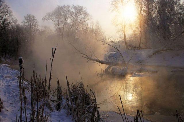 Синоптик спрогнозировала для Украины туманы, дожди и две оттепели